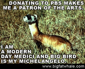 PBS Ferret